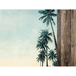 Kaisercraft - Paradise Found Collection - 12 x 12 Double Sided Paper - Palm Trees