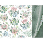 Kaisercraft - Greenhouse Collection - 12 x 12 Double Sided Paper - Succulents