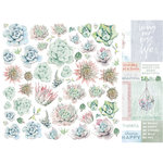 Kaisercraft - Greenhouse Collection - 12 x 12 Double Sided Paper - Terrariums