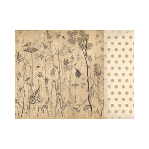 Kaisercraft - Timeless Collection - 12 x 12 Double Sided Paper - Botanical