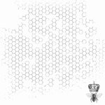 Kaisercraft - Forget-Me-Not Collection - 12 x 12 Acetate Overlay - Bee Hive