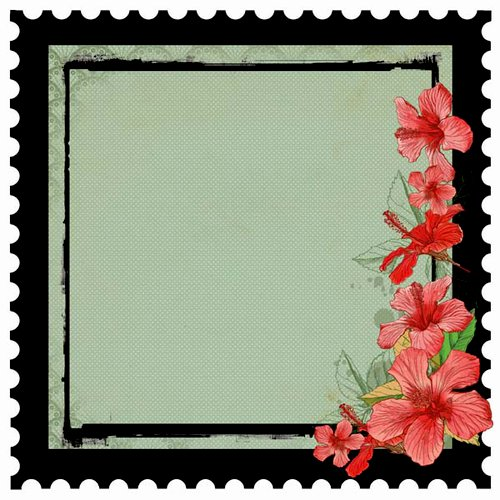 Kaisercraft - Tropicana Collection - 12 x 12 Die Cut - Island