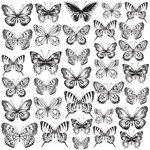 Kaisercraft - Romantique Collection - 12 x 12 Acetate Paper - Butterflies