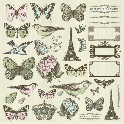 Kaisercraft - Bonjour Collection - 12 x 12 Sticker Sheet - Icon