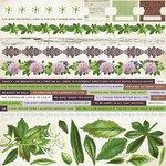 Kaisercraft - Botanica Collection - 12 x 12 Sticker Sheet
