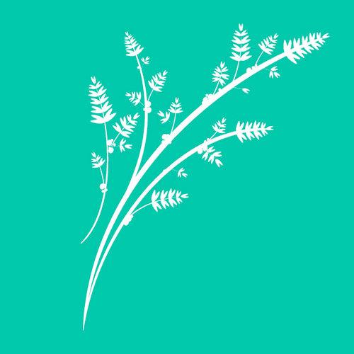 Kaisercraft - Stencils Template - Wheat