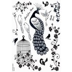 Kanban Crafts - Birds of Paradise Collection - Clear Acrylic Stamps - Peacock