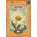 K and Company - Cottage Garden Collection by Tim Coffey - Chipboard Box with Foil Accents - Alphabet