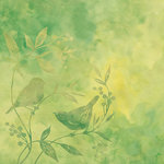 K and Company - Nature Collection - 12 x 12 Paper - Green Birds