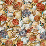 K and Company - Travel Collection - 12 x 12 Paper - Shells