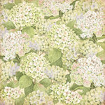 K and Company - Floral Collection - 12 x 12 Paper with Glitter Accents - Green Hydrangea