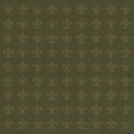 K and Company - Boy Scouts of America - Paper - Fleur De Lis