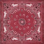 Karen Foster Design - Red Bandana