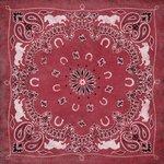 Karen Foster Design - Red Bandana