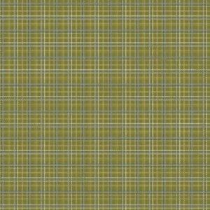 Karen Foster Design - Golf Collection - Paper - Green Plaid