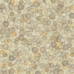 Karen Foster Design - Coin Collecting Stamp Collecting Collection - 12 x 12 Paper - Coins, Coins, Coins