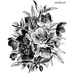 LaBlanche - Flowers Collection - Foam Mounted Silicone Stamp - Christmas Rose