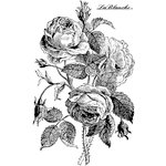 LaBlanche - Flowers Collection - Foam Mounted Silicone Stamp - English Rose