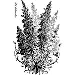 LaBlanche - Flowers Collection - Foam Mounted Silicone Stamp - Foxglove