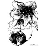 LaBlanche - Flowers Collection - Foam Mounted Silicone Stamp - Flower and Bud