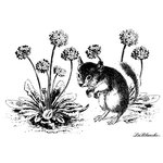 LaBlanche - Foam Mounted Silicone Stamp - Little Edgar between Flowers