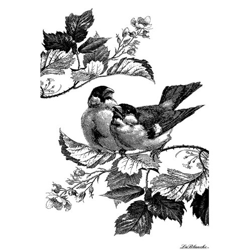 LaBlanche - Foam Mounted Silicone Stamp - Two Sparrows
