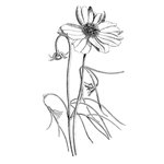 LaBlanche - Foam Mounted Silicone Stamp - Spring Flower