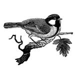 LaBlanche - Foam Mounted Silicone Stamp - Chickadee