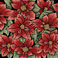 LDRS Creative - Clear Photopolymer Stamps - Poinsettia