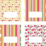 LDRS Creative - Soft Blush Collection - Cardstock Stickers - Tabs