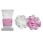 Little B - Pull Flowers - Daisies