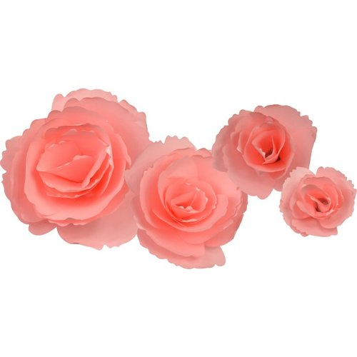 Little b paper flower pink peony petal kits little b paper flower petal kits pink peony mightylinksfo