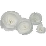 Little B - Paper Flower - Petal Kits - White Peony