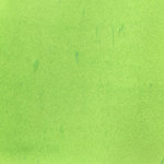Lindy's Stamp Gang - Flat Fabio - Color Mist Spray - Luscious Lime