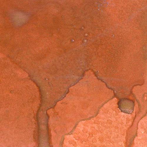 Lindy's Stamp Gang - Starburst Color Shot - 2 Ounce Jar - Canna Lily Burnt Orange