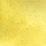 Lindy's Stamp Gang - Starburst Color Shot - 2 Ounce Jar - Golden Sleigh Bells