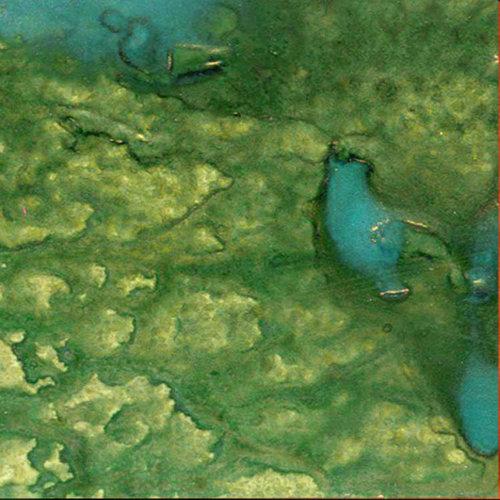 Lindy's Stamp Gang - Starburst Spray - 2 Ounce Bottle - Ponderosa Pines Olive