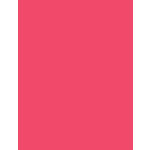 My Colors Cardstock - My Minds Eye - 8.5 x 11 Heavyweight Cardstock - Watermelon Pink