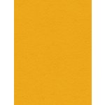 My Colors Cardstock - My Minds Eye - 8.5 x 11 Heavyweight Cardstock - Lemon Sorbet