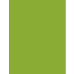 My Colors Cardstock - My Minds Eye - 8.5 x 11 Heavyweight Cardstock - Crisp Green