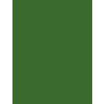 My Colors Cardstock - My Minds Eye - 8.5 x 11 Heavyweight Cardstock - Herb Garden