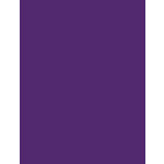 My Colors Cardstock - My Minds Eye - 8.5 x 11 Heavyweight Cardstock - Cyber Grape