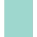 My Colors Cardstock - My Minds Eye - 8.5 x 11 Heavyweight Cardstock - Pale Aqua