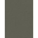 My Colors Cardstock - My Minds Eye - 8.5 x 11 Heavyweight Cardstock - Battleship Gray