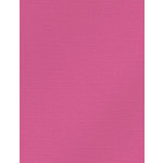 My Colors Cardstock - My Mind's Eye - 8.5 x 11 Glimmer Cardstock - Frosty Pink