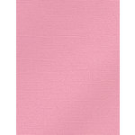 My Colors Cardstock - My Mind's Eye - 8.5 x 11 Glimmer Cardstock - Pink Delight