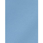 My Colors Cardstock - My Minds Eye - 8.5 x 11 Glimmer Cardstock - Soft Blue