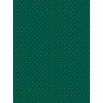 My Colors Cardstock - My Minds Eye - 8.5 x 11 Mini Dots Cardstock - Fiddleneck Fern
