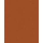 My Colors Cardstock - My Minds Eye - 8.5 x 11 Classic Colors Cardstock - Ginger
