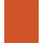 My Colors Cardstock - My Minds Eye - 8.5 x 11 Classic Colors Cardstock - Papaya